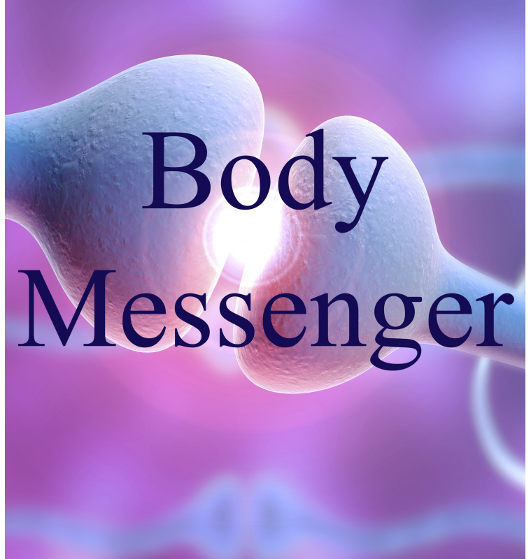Body Messenger 4
