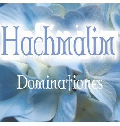 Hachmalim